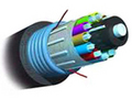 AMP 室外用铠装型光缆1664181-5